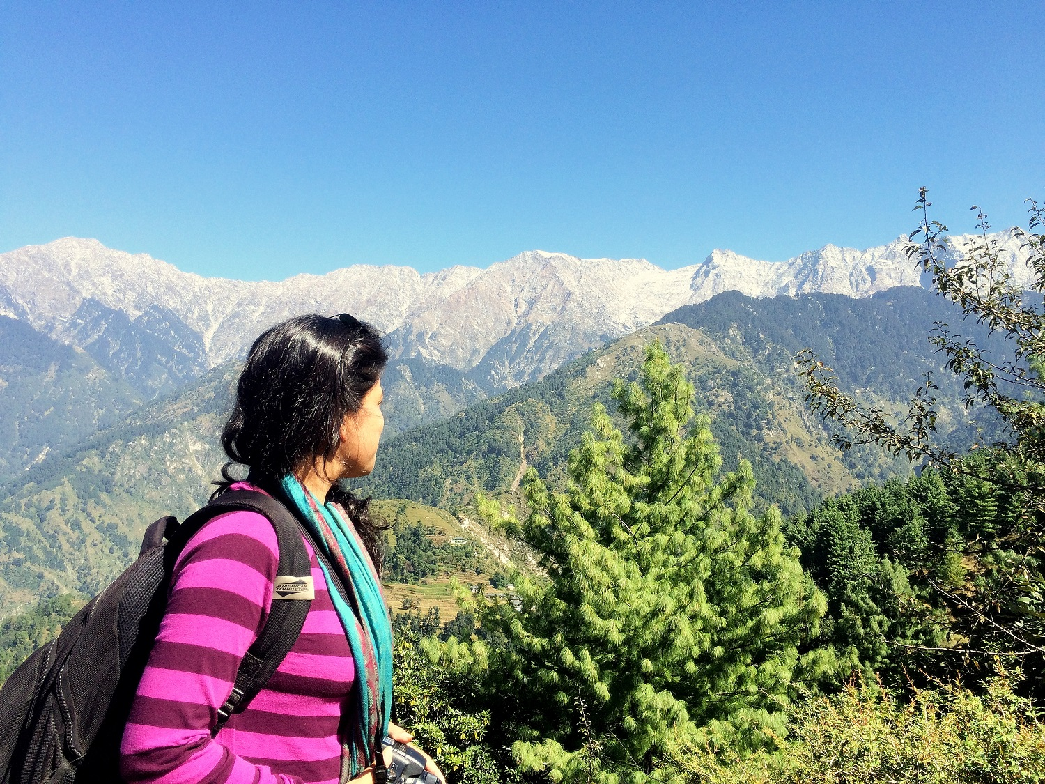 Triund Trek - Spirited Blogger